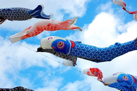 食材特集!「旬の鮮魚」について(3月~5月編)