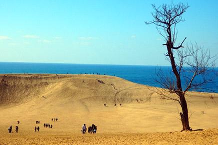 鳥取砂丘がポケモンGOの聖地に!?その理由とは?